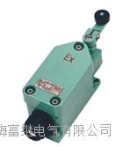LX8077-11行程開關 LX8077/1-11