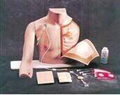胸部注射训练模型 KAH-XZ型