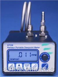 XPDM系列便攜式露點儀