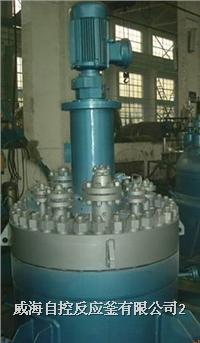 高压反应釜(端部平盖结构) WHF