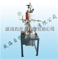 实验高压加氢反应釜 WHFS