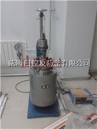 5L实验用反应釜 WHFS-5L