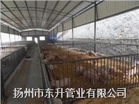 养殖场棚搭建-扬州东升管业