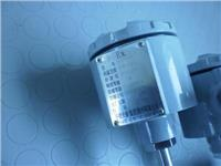 熱電阻 WRFB  WRCB-240  333-750℃ 333-750℃