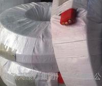 安徽梁橋式行車扁平電纜加強型抗拉耐高溫特種電纜公司 YGGBG450/750V