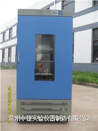 ZJSPX-540藥品保存箱 ZJSPX-540