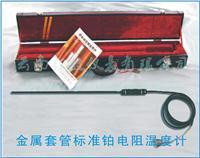 金属套管标准铂电阻温度计 WZPB-9