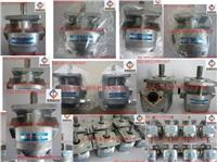 NIHON SPEED齒輪泵K1P1L11A,K1P2L11A,K1P3L11A,K1P6L11A,K1P7L11A,K1P9L11A,K1P10L11A K1P1L11A,K1P2L11A,K1P3L11A,K1P4L11A,K1P6L11A,K1P7L