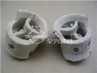 陶瓷共軛環