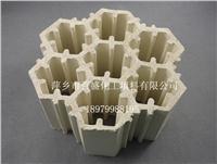 萍鄉百盛規整全瓷組合填料 220-230MM