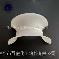萍鄉百盛陶瓷矩鞍環   陶瓷填料