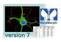 MetaMorph Basic(标准版)分析软件 MetaMorph Basic
