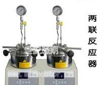 SLP2500平行反应釜