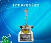 250ML催化微型反应釜
