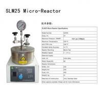 25ml微型反应釜