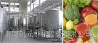果蔬汁复合生产线(青汁/浊汁/浓缩汁)