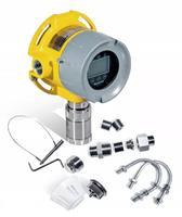 有毒有害氣體探測器 RAEGuard 3