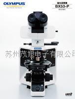 OLYMPUS偏光顯微鏡 BX53-P