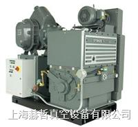 Stokes 1754 機械增壓泵組合 Stokes真空泵