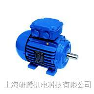 WEG高效电机 W22