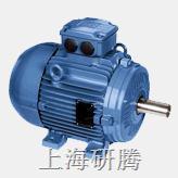 WEG高效节能电机 W21 W22