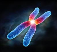 宏基因組測序