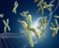 全基因組重測序