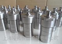 LTG系列高压消解罐厂家 GWY-20