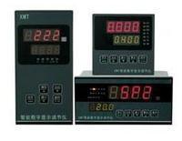 XTMD-1000J 智能數字顯示調節儀 XTMD-1000J