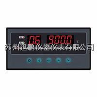 16路温度亚洲在线仪/迅鹏WPL16-AV0 WPL16