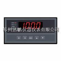 迅鹏WPHC-E手动操作器 WPHC