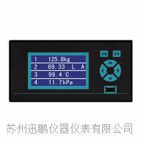 温度亚洲成人社区仪(迅鹏)WPR10 WPR10
