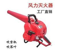 风力灭火器大功率手持式吹风机吹尘机吹雪机 6MF-30