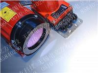 DDLS 200劳易测LEUZE光学数据通讯