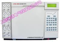 色譜檢測儀 LYGC-6800型