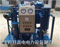 双极滤油机厂家 DZJ-II
