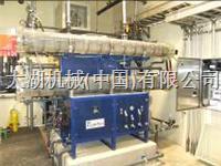 美国severntrentdenora 海水制氯LNG工艺消毒系统 cloretech
