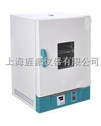 101-3S立式電熱恒溫幹燥箱 101-3S