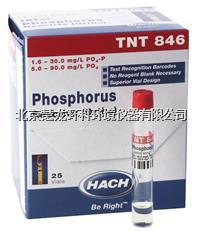 TNT846正磷酸鹽和活性磷試劑