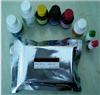 人中期因子(MK)ELISA檢測試劑盒說明書