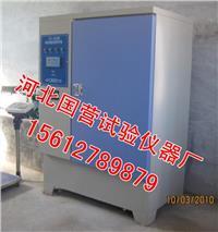 混凝土标养箱 YH-40B