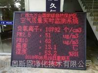 广东省景区生态负氧离子设备传感器研发生产直销厂家 OSEN-FY