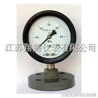 防强腐全塑隔膜压力表 YTP-100S