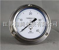 轴向带边压力表 Y-50ZQ/60ZQ/75ZQ/100ZQ/150Z