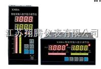 智能双输入显示调节仪 XT-XMBA-9000