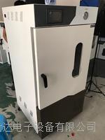 精密真空一体干燥箱 RSD-210Z