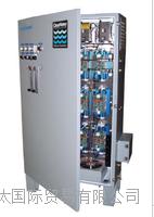 Clearwater 用于橱柜的臭氧发生器 CD12000P 170克每小时