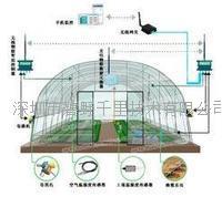 山東智能型大棚溫室在線監測系統 BYQL-WP