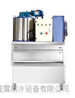 德兰雪1500公斤片冰机