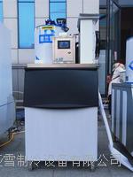 德兰雪300KG鳞片制冰机Ⅱ型